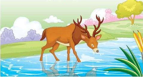 esopo: el ciervo y su reflejo
