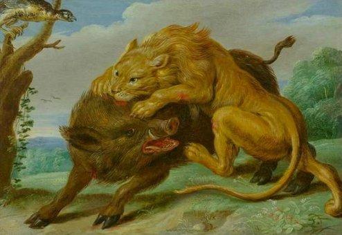 el león y el jabalí