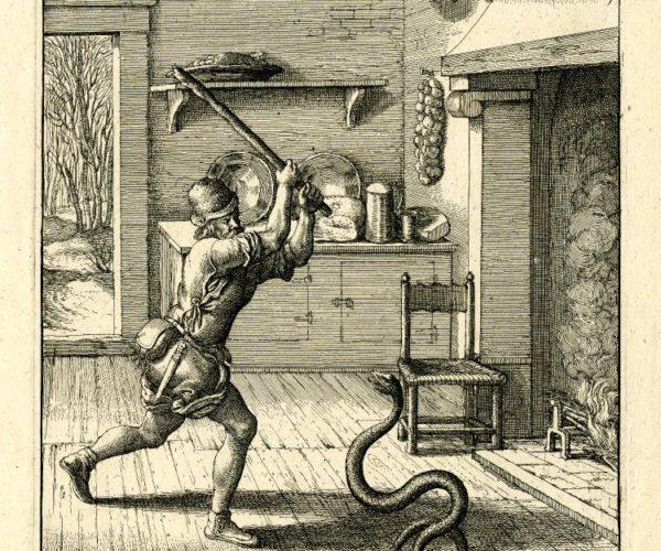 El hombre y la serpiente