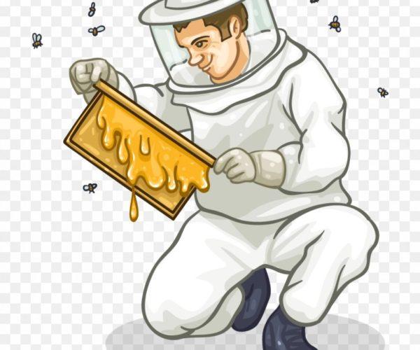 el apicultor y las abejas