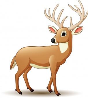El ciervo y el cazador fabuka
